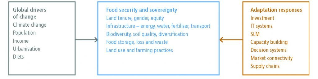 Chapter 5 Food Security Special Report On Climate Change And Land